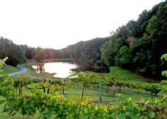 The Georgia Winery in Ringgold, Georgia.