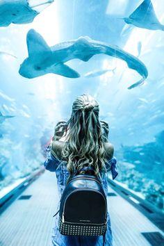 More Than 44 Dubai Aquarium Photography Ideas Insta Ideas dubai acuario fotografía ideas ideas insta dubai aquarium fotografie ideen insta ideen idee per la fotografia dell'acquario di dubai insta ideas Dubai Mall, In Dubai, Visit Dubai, Dubai City, Travel Photography Tumblr, Photography Beach, Photography Ideas, Film Photography, Travel Photography