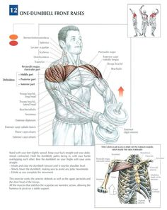 Single Dumbbell Front Raises another good idea to help mobility!