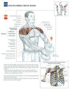 . #gym #bodybuilding