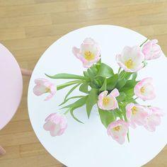 INSTAGRAM : Le soleil est de retour ☀️ Alors j'en profite un maximum en ouvrant grand les fenêtres pendant que je bosse  Sinon ma nouvelle vidéo constellation est sortie  Je vous ai mis le lien dans ma bio  Belle journée ensoleillée les princesses ✨ #sunisback #sunnywednesday #tulipes #freshcutflowers -Yoko