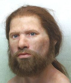 Reconstruction of Cees the Stone Age man by Kenneth Stamp