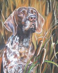 German Shorthaired Pointer Paintings - German Shorthaired Pointer in Cattails  by Lee Ann Shepard