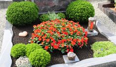 For the spring.ways green ground.fer decker and early flowering bulbs and spring flowers. Big Flowers, Spring Flowers, Beautiful Flowers, Front Garden Entrance, Porch And Terrace, Green Ground, Cemetery Flowers, Big Garden, Bulb