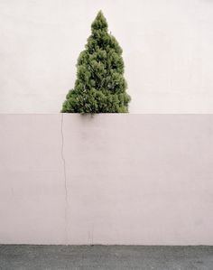 Hanguk by Florian Bong-Kil Grosse in Thisispaper Magazine