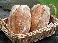 Czech and Slovak group  in NY posted a great video from NY Times on how to make a rustic bread without kneading. If you have ever attempted making a rusting bread, you know that kneading is a very important part of the whole process. If you don't...