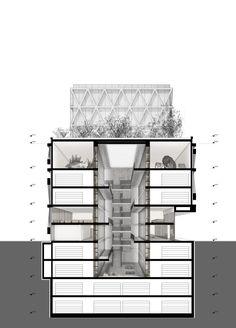 Ortner Ortner . Caretta + Weidmann . New Museum of Natural History . Basel  (9)