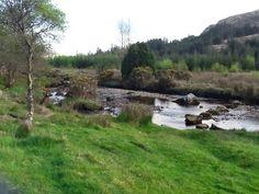 Bards In The Woods: Calming Carrownaskeagh on the Ladies Brae