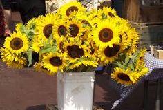 flowers bucket - Szukaj w Google
