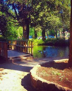 Parque Temuco