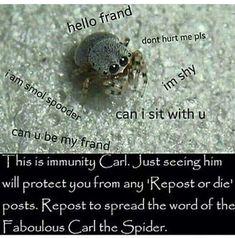 Carl the smol spider!!! | Undertale Amino