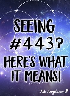 Have you seen angel number 443 frequently? Check out this article to decipher the underlying message of angel number 443 from the angels! Spiritual Messages, Spiritual Gifts, Spiritual Guidance, Master Number 11, Number Sequence, Your Guardian Angel, Angel Numbers, Morning Ritual, Practice Gratitude