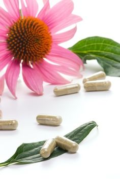 No doubt there has been remarkable advancement in the field of medicines and botany. Various medicines has been discovered to treat many fatal diseases.