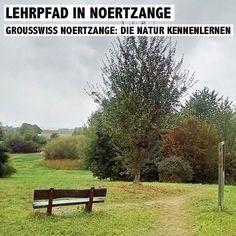 Lehrpfad in Noertzange - Die Vielfalt der Natur spielerisch entdecken. mehr Infos dazu gibt es auf www.rosportlife.com