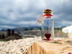 You have my heart. Tiny message in a bottle. by Cocospots on Etsy