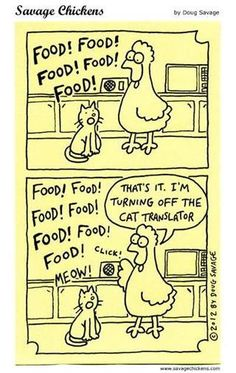 I'm sure someone is feeding their cat right now. LOL