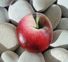 Roca de apple de pintado a mano