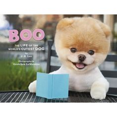 Boo~The Life of the World's Cutest Dog