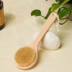 Cheap wooden bath brush, Buy Quality bath brush directly from China natural bristle brush Suppliers: Natural Bristle Brush Exfoliating Scrub Brush Bristle Long Handle Wooden Bath Brushes Wash Scrubber Body Massage Brush Body Scrubber, Natural Bristle Brush, Wooden Bath, Exfoliating Body Scrub, Bath Brushes, Body Brushing, Spa, Shower Accessories, Wash Brush