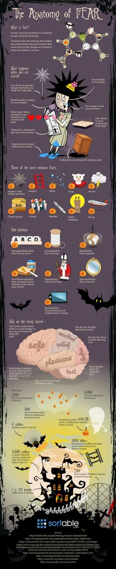 We all have something we are afraid of, whether it is heights, mice, dogs, crowds or flying. Sortable thought we would get you into the Halloween spirit by putting together an infographic about fear:    - What is fear  - What happens to your body when you are scared  - Some of the most popular fears and some other odd ones  - Why we enjoy being scared