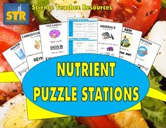 A fun, engaging, learning focused look at the nutrients essential to human life!  A consistent student favorite!  $ Human Nutrition, Nutrition Classes, Nutrition Activities, Nutrition Education, Health And Nutrition, Physical Education, Nutrition Guide, Science Education, Health Class
