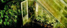 Herbology Greenhouses | Page 1 | RP Forum - Hogwarts Castle | Guild Forums | Gaia Online
