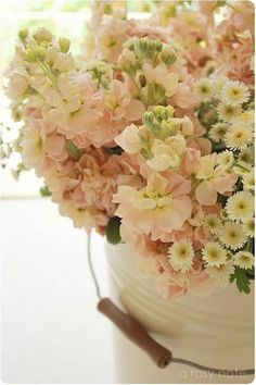Soft blushes..