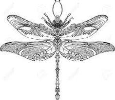 Bildergebnis für dragonfly drawing