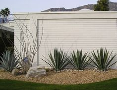 Desert Modern Landscaping | Palm Springs Modern Homes
