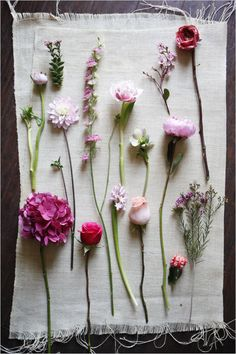 These can be purple too! The following pink flowers used in this guide are dahlia, larkspur, Dutch hydrangea, Dutch tulip, garden blossom, garden rose, rose, grafted cactus, helleborus, hyacinth, peony, ranunculus, succulent blossom, and wax flower.