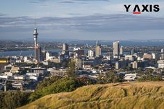 A study stated that New Zealand gained more because of high immigration levels than was perceived earlier. #YAxisImmigration #YAxisNewZealand