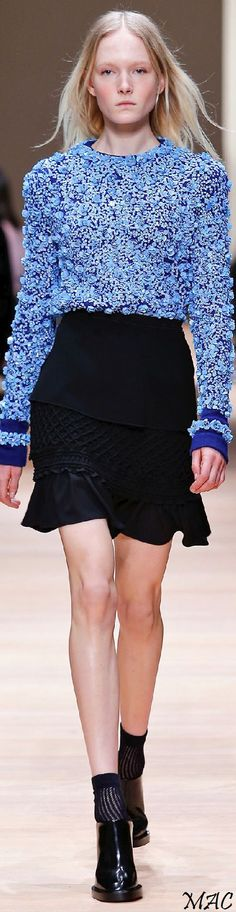 Fall 2015 Ready-to-Wear Carven