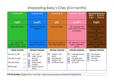 Dunstan Baby Language- Interpreting Newborn Baby Cries!