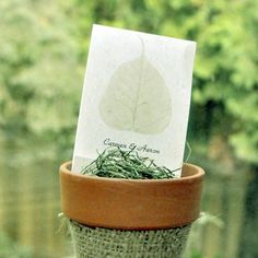 Leaf of Life Seed Favors