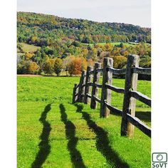 Vermont  ✨ Photographer  @tylo06 ✨  #ScenesofNewEngland  Pic of the Day  10.25.15 ✨ C o n g r a t u l a t i o n s ✨ ---------------------------------------- #scenesofVT #woodstockVT  #igvermont #vermont_potd  #billingsfarmandmuseum #billingsfarm  #vermont_explore #explorevermont #travelvermont #nikon  #vermont_fallfoliage  #f...
