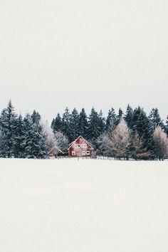 #Winter #snowscenes
