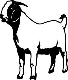 club show lambs clipart market goat lamb show program animals rh pinterest com clip art goat head clip art goatee