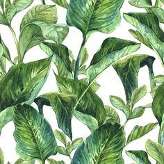 Fototapeta Winylowa Akwarela Jednolite tło z tropikalnych liści - Rośliny i kwiaty