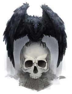 Crow+skull... Amazing for a tattoo!                                                                                                                                                                                 Plus