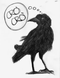 crow blackandwhite