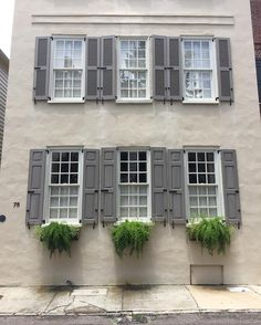 """218 Likes, 2 Comments - Historic Charleston Foundation (@historiccharlestonfoundation) on Instagram: """"Less is more on #windowboxwednesday at 78 Tradd. The beauty of Charleston's preserved landscape is…"""""""