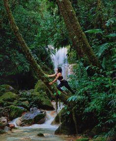 Into the wild Cataratas Bajos del Toro@imelko #CostaRicaExperts#CostaRica#puravida#travelcostarica#crfanphotos#costaricaphoto#costaricagram#costaricapuravida