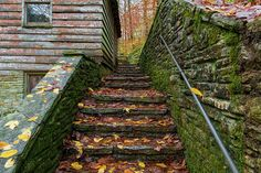 Fall Up Stairs Art Print by Sharon Popek.  All prints are professionally printed, packaged, and shipped within 3 - 4 business days. Choose from multiple sizes and hundreds of frame and mat options.
