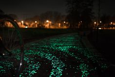 Glow-In-The-Dark+Bicycle+Path+Makes+Bike-Riding+At+Night+An+Enchanting+Experience