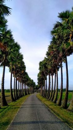 Bangladeshis are essentially simple in nature. Since time immemorial they are noted for their valour and resilience as well Best Background Images, Photo Background Images, Photo Backgrounds, Landscape Photos, Landscape Photography, Nature Photography, Beautiful Nature Wallpaper, Beautiful Landscapes, Beautiful Roads