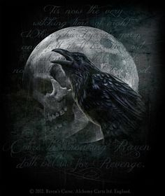 The raven and the skull-moon | Goth | Pinterest | The Raven Raven and ...