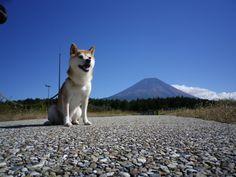 Mt.Fuji !