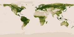Earth's Vegetation. World map of vegetation created with Suomi NPP data. Credit: NASA/NOAA