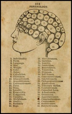 themonkeyisyourfriend:  106 – Phrenology