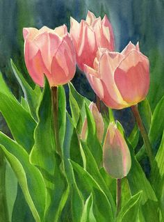 Peach Colored Tulips With Buds Painting by Sharon Freeman - Peach Colored Tulips With Buds Fine Art Prints and Posters for Sale